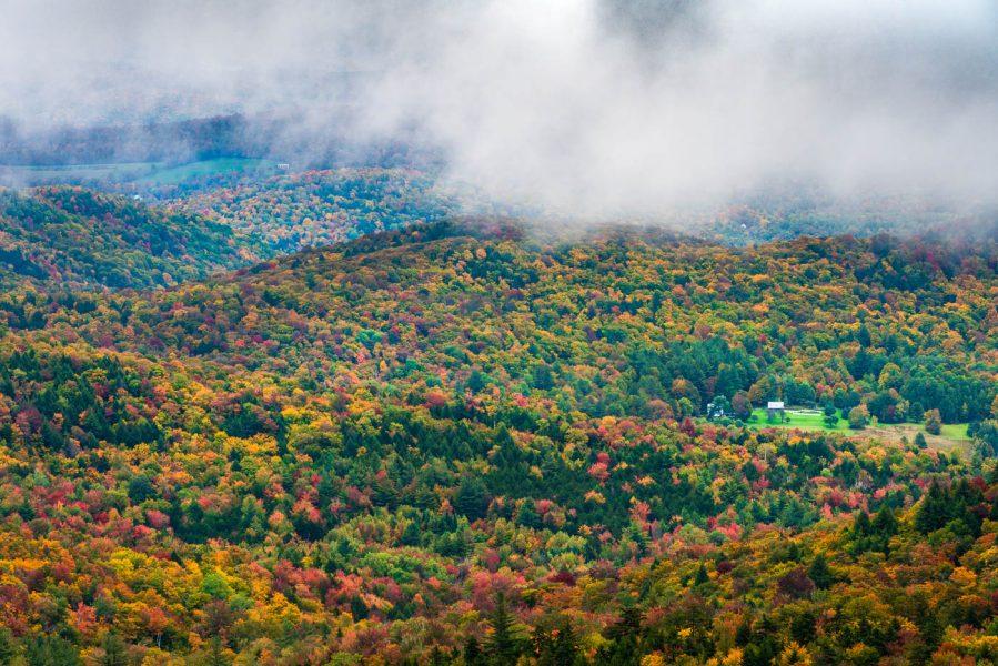 Foggy Morning During Fall Foliage