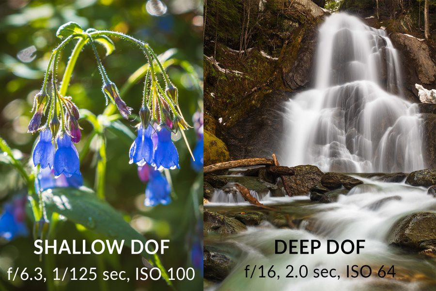 Image examples of shallow versus deep depth of field